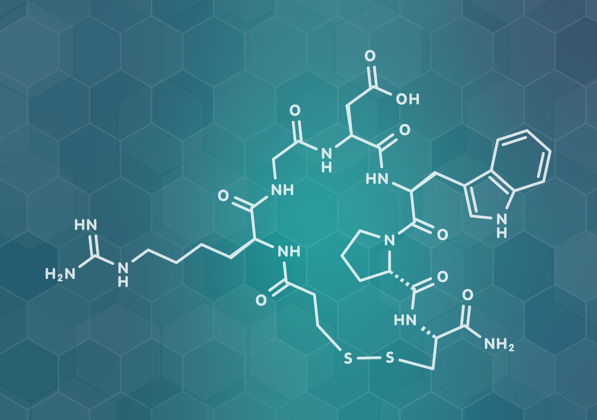 Peptides and Their Functions