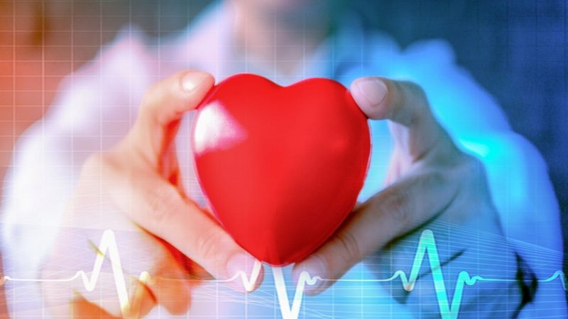Why Have a Healthy Heart Rate